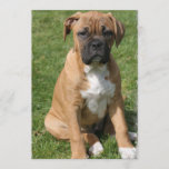 Boxer Puppy Invitation