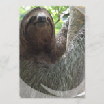 Sloth Photo Design Invitation